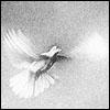 voicelessghost userpic
