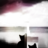 virtue is relative at best: kitty: bottom squares and sky