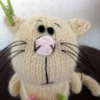 kott13 userpic