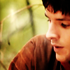 in the woods with the werewolves: merlin in forest