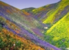 colourful, hills