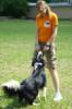 dogschool_ru