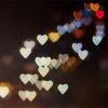 night hearts