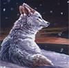 Tundra - By Kyndir