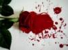 Love r0s33s PAinT