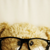 Teddy Bear Glasses