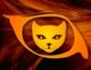 kot_fire userpic