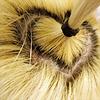 saanrio: B2ST - Yeoseob's Hair