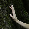 tree, hand