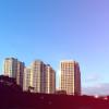 pelican_endie userpic