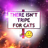 There isnt tripe for cat