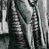 isabelladangelo: bustle skirt