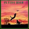 buzziecat: Flying High - cats
