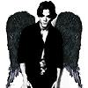 tinkabell007: Jared - dark angel