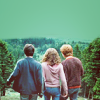 Meredith: Harry Hermione Ron - hp