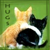 Chris: *011 Kitty Hugs