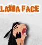 Lama Gesicht
