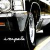 backseat_impala userpic