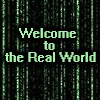 real world matrix