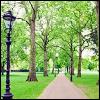 greensting userpic