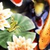 asherah051 userpic