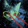 laser eyed kitten