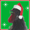 chicken xmas, christmas, rooster santa, santa rooster It's Chicken the Rooster!
