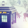 DW: winter!tardis