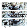 Alice - Creepy Cat