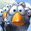 Jenn: OMG! Birds