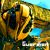Bumblebee Guardian