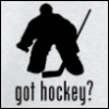got hockey?