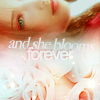 [FFVII] Aerith - - Blooms Forever