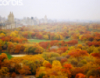 moscow_queens