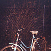 misc : just a bicycle ride