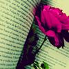 iloveyoualwaysx userpic