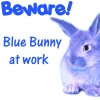 bunny at work