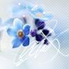 forever_myne userpic
