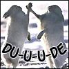 Geoviki: animals - du-u-u-de
