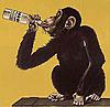 swilling monkey