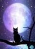 misteriosa_luna