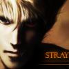strayxwolf userpic