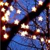 stars in a tree