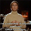 Carl Sagan is made of stars