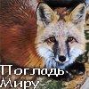 jarrahzeff userpic