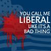 Politics | Liberal