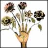 artfulaffection userpic