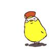 sadiq bird- sonowakaremichi