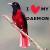 caterfree10: I heart my daemon