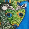 art [peacocks]